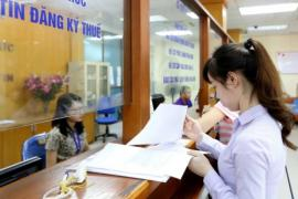 Cô gái sinh năm 1992 ở Hà Nội có thu nhập 330 tỷ đồng, nộp thuế 23,4 tỷ đồng