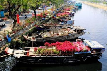TP. HCM dự kiến tổ chức 179 chợ hoa để tiêu thụ hoa, cây cảnh dịp Tết Nguyên đán