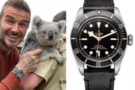 """""""Mê mẫn"""" trước chiếc đồng hồ Tudor Black Bay mà David Beckham diện khi sang Việt Nam"""