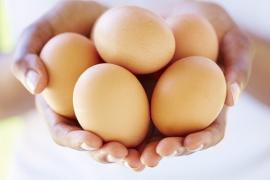 Điều gì xảy ra nếu bạn ăn quá nhiều trứng?