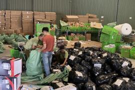 Đột kích kho hàng lậu hơn 100.000 sản phẩm tại cảng ICD Mỹ Đình