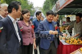 Rộn ràng Phiên chợ cam Hưng Yên năm 2019