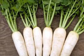Củ cải trắng bổ dưỡng và trị được nhiều bệnh
